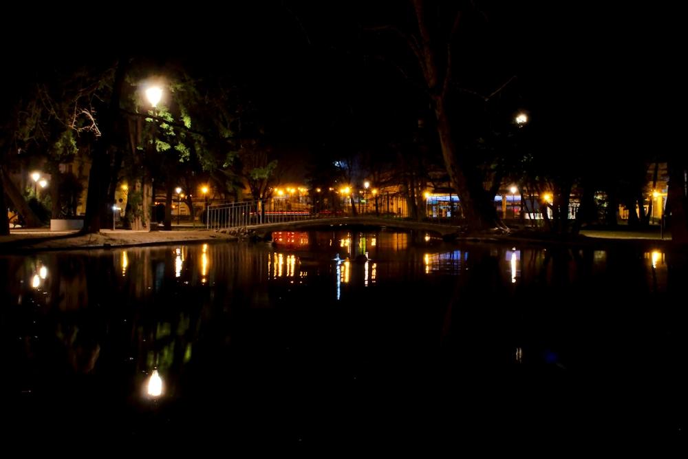 Dreaming Piazza Dante (1/6)