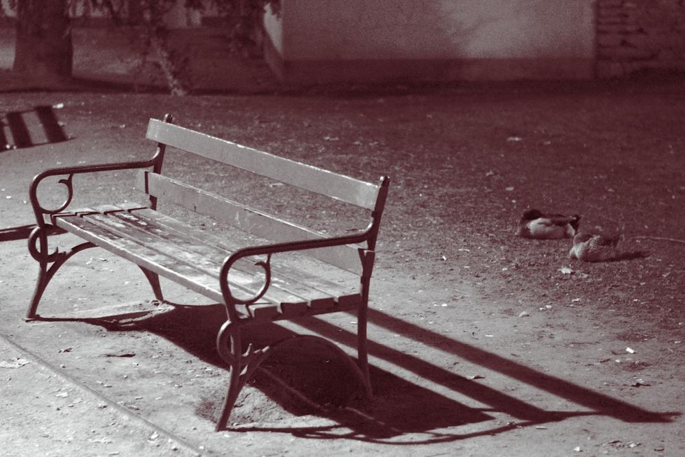 Dreaming Piazza Dante (2/6)