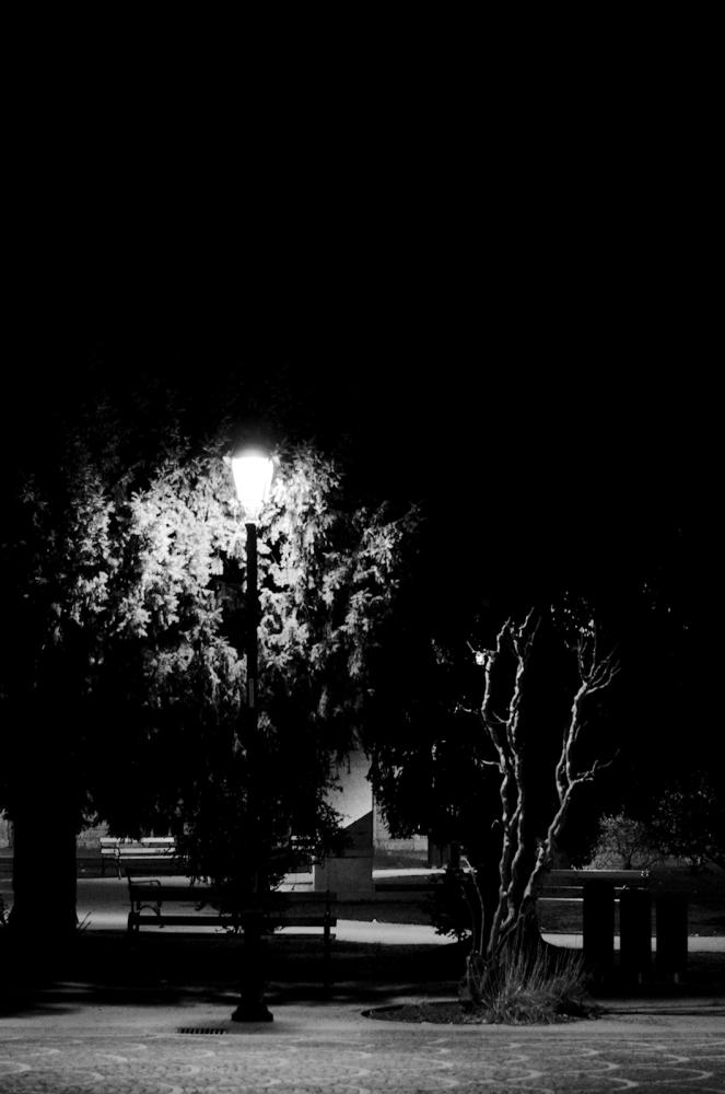 Dreaming Piazza Dante (6/6)