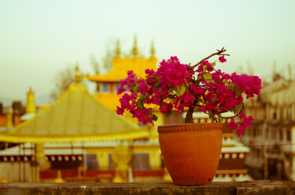 Boudanath - Kathmandu