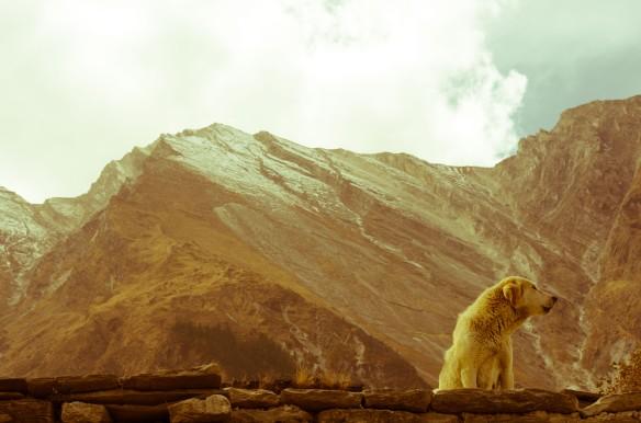 Villaggio di Marpha - Nepal